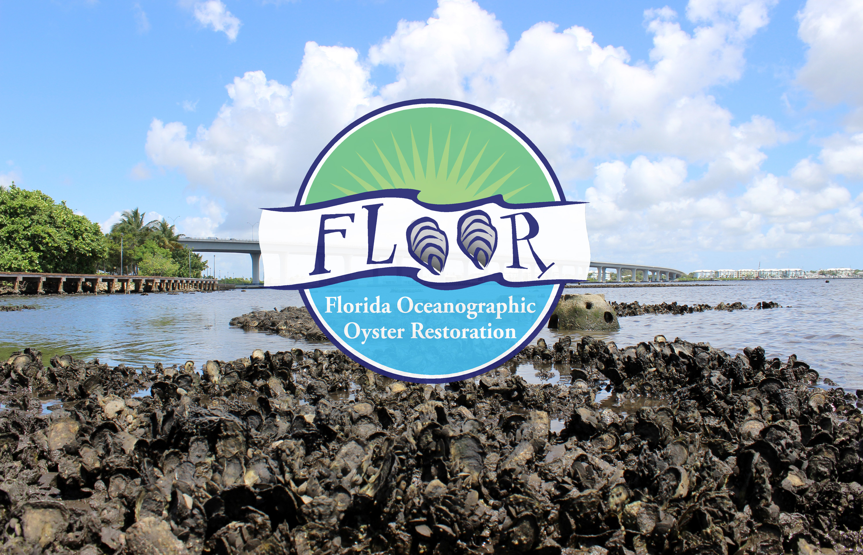 FLOOR logo placed over image of oyster bed