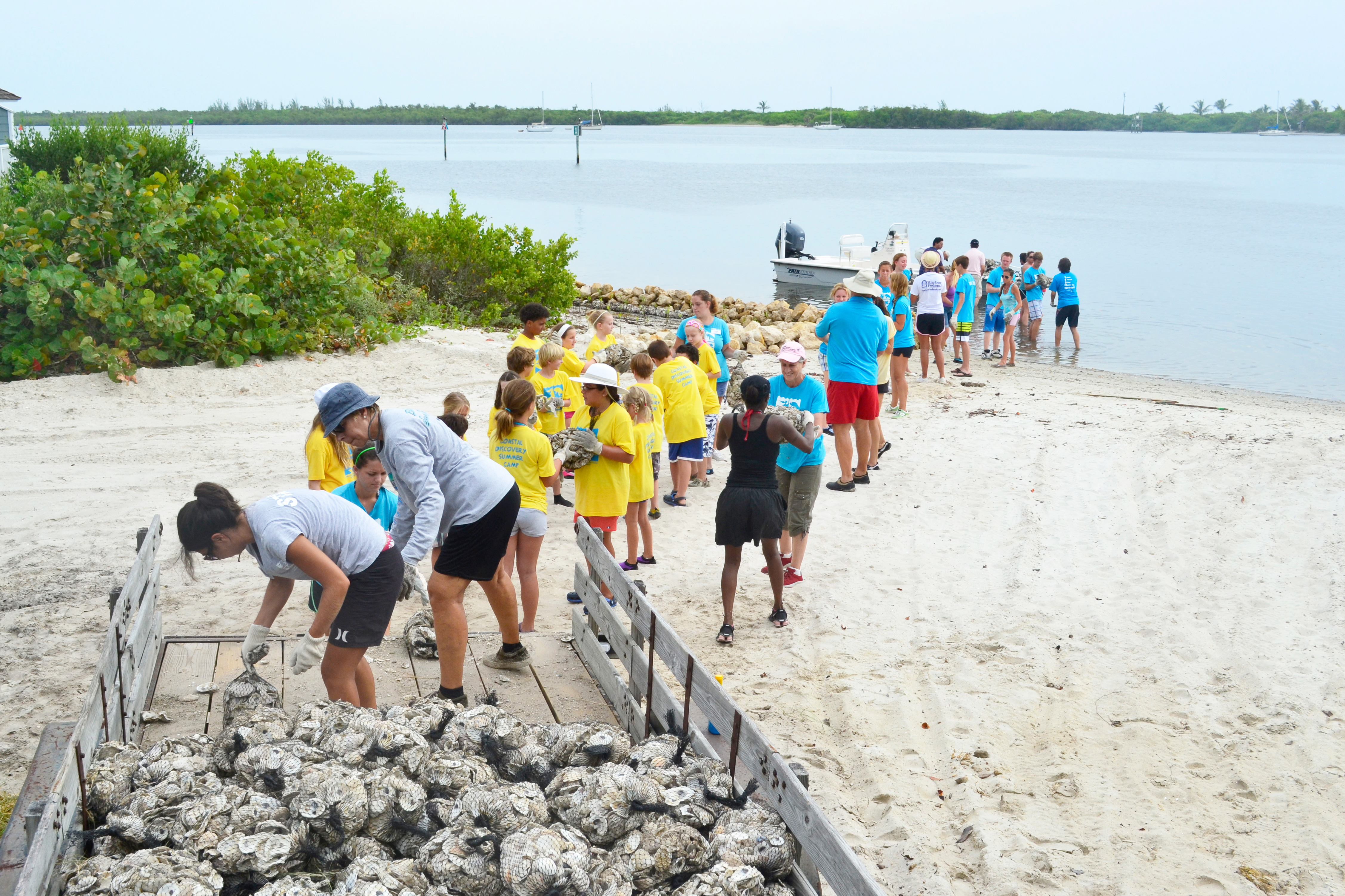 Volunteers helping to deploy oyster bags into the Indian River Lagoon