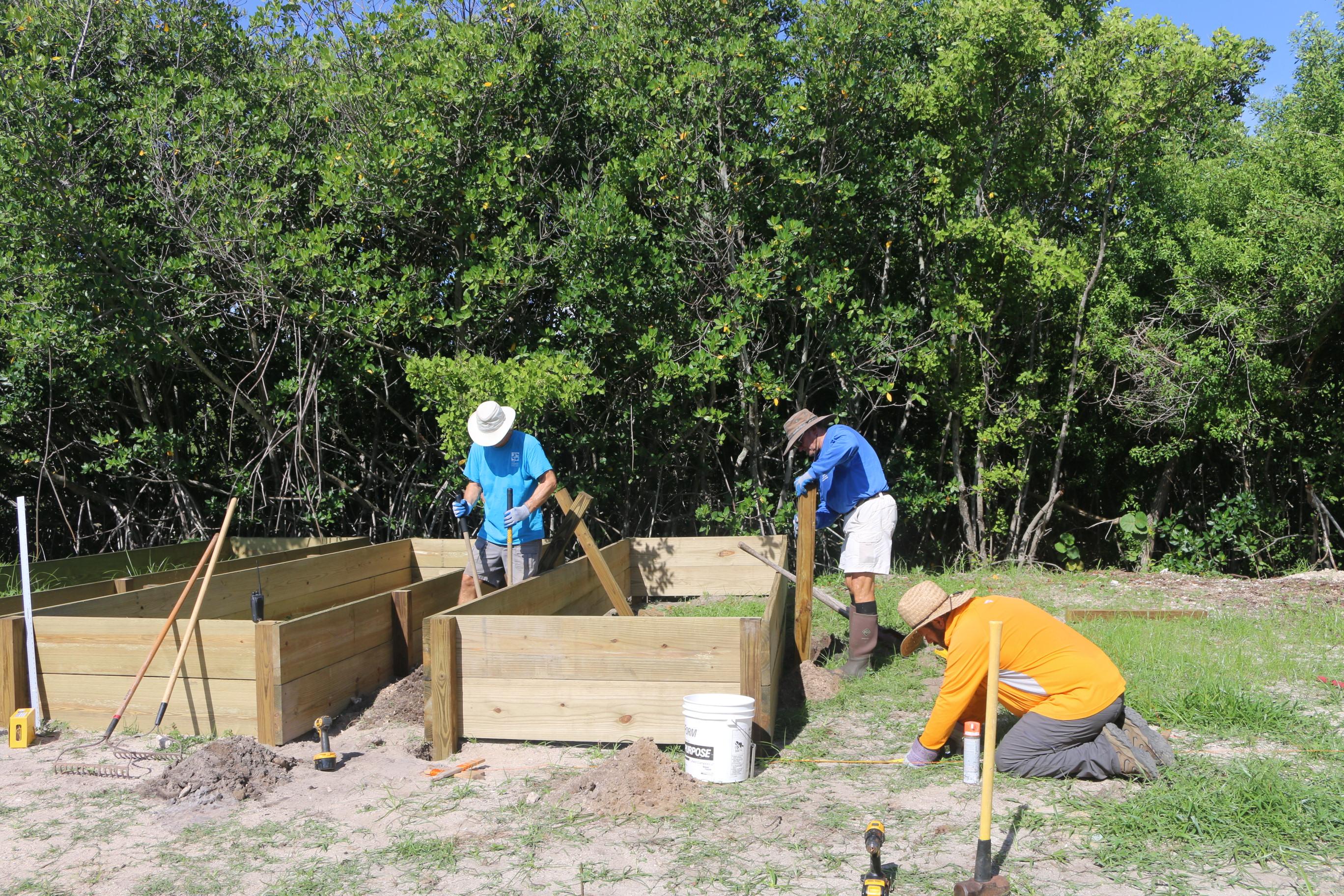 Building of mangrove nursery