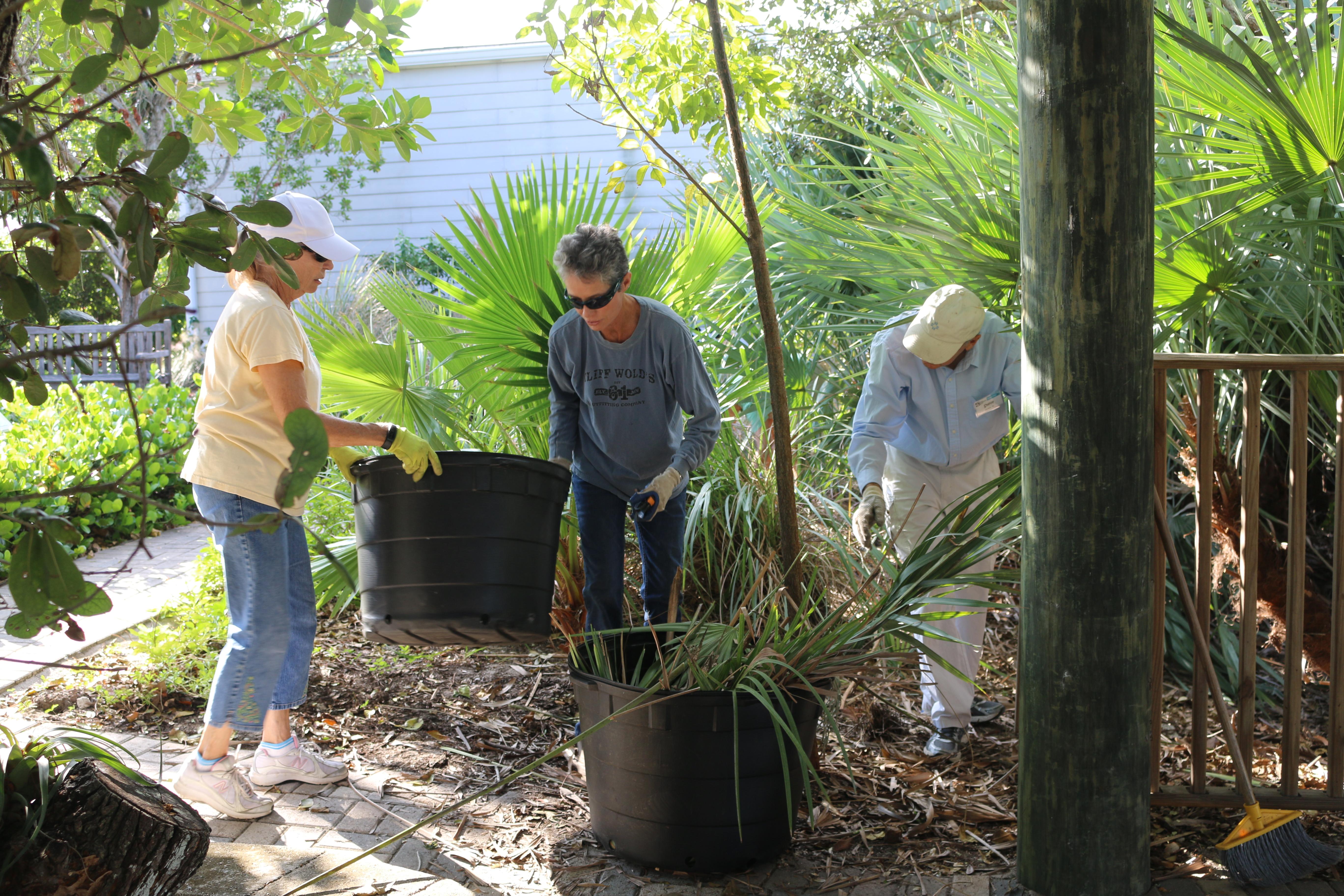Green team volunteers working in the garden