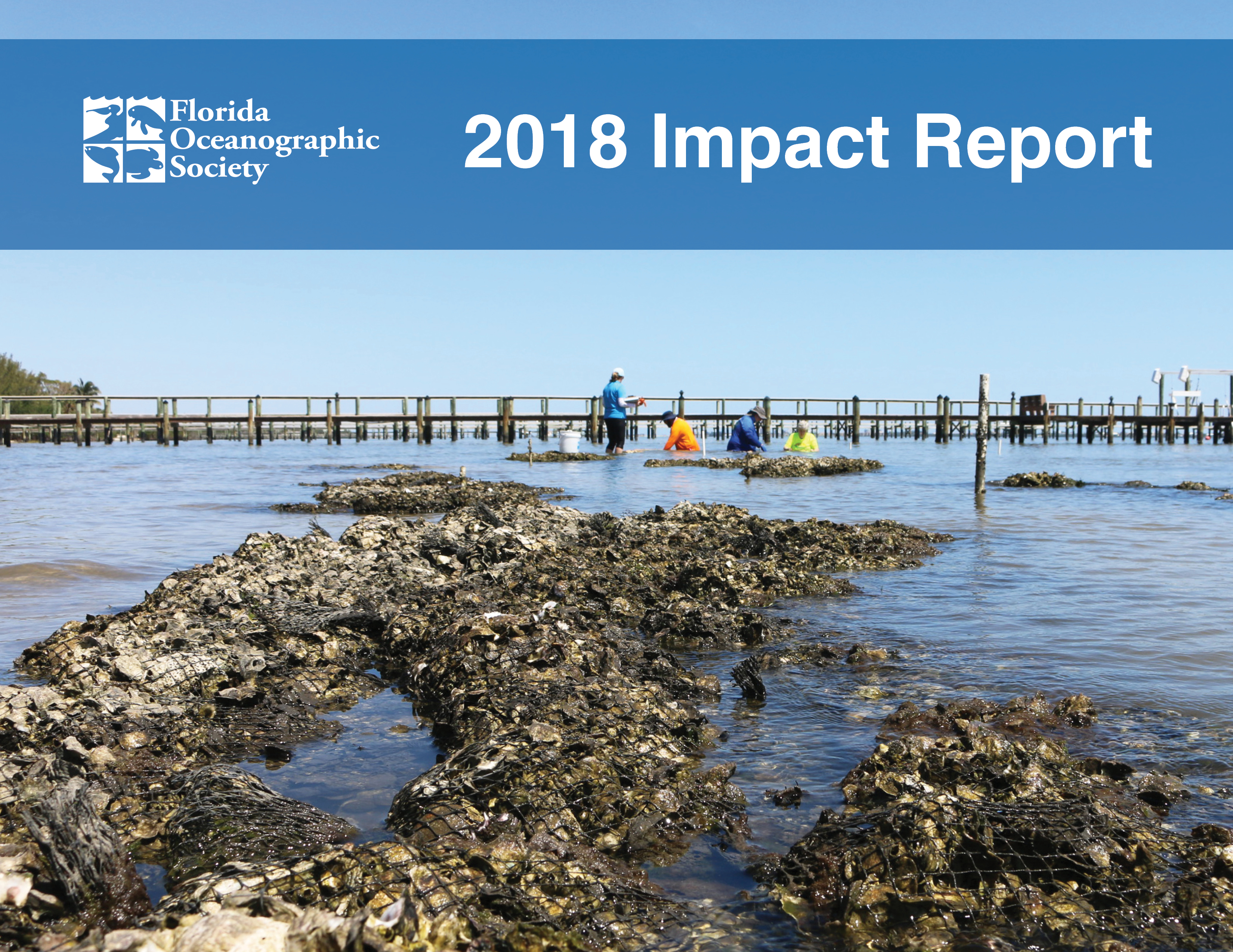 cover of our 2018 impact report