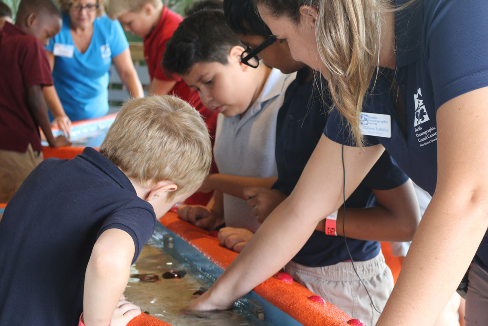 children learning at the touch tank