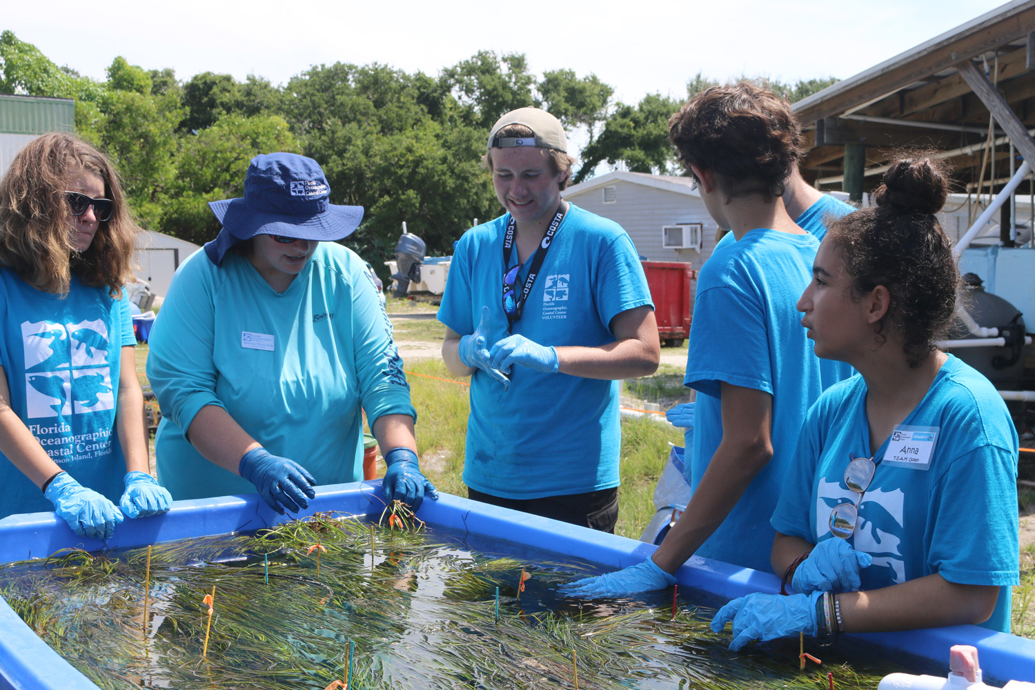 Team ocean students learning about seagrass
