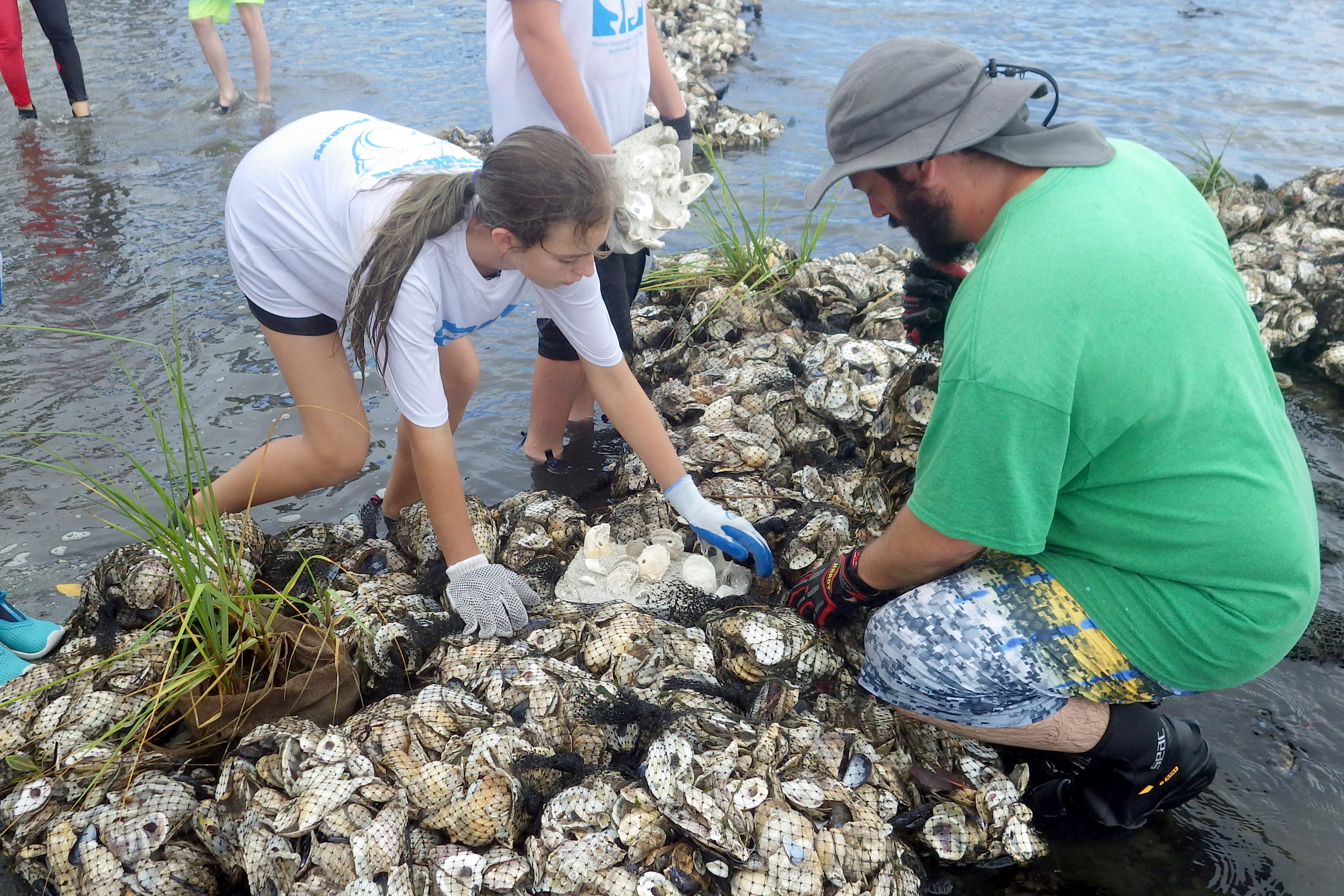 summer campers helping to create an oyster reef