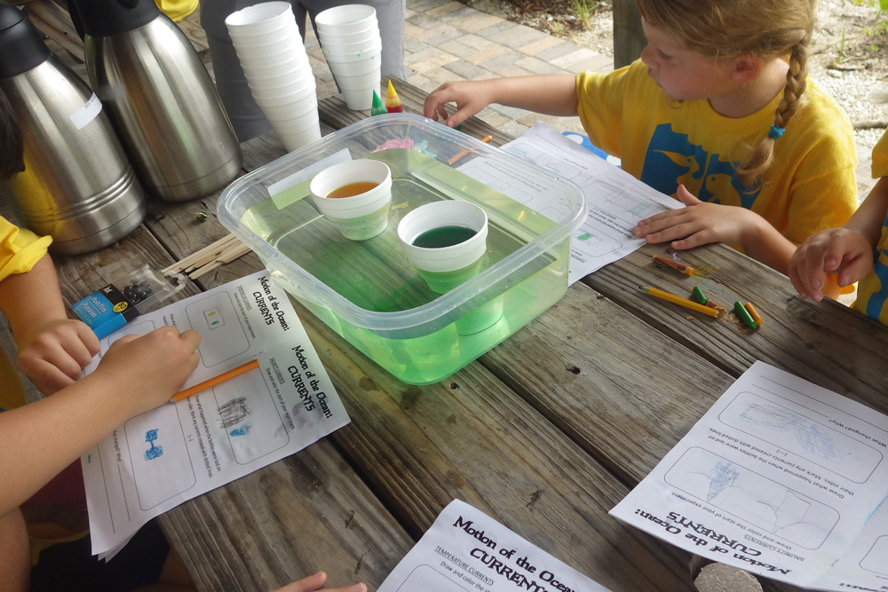summer campers performing a science experiment