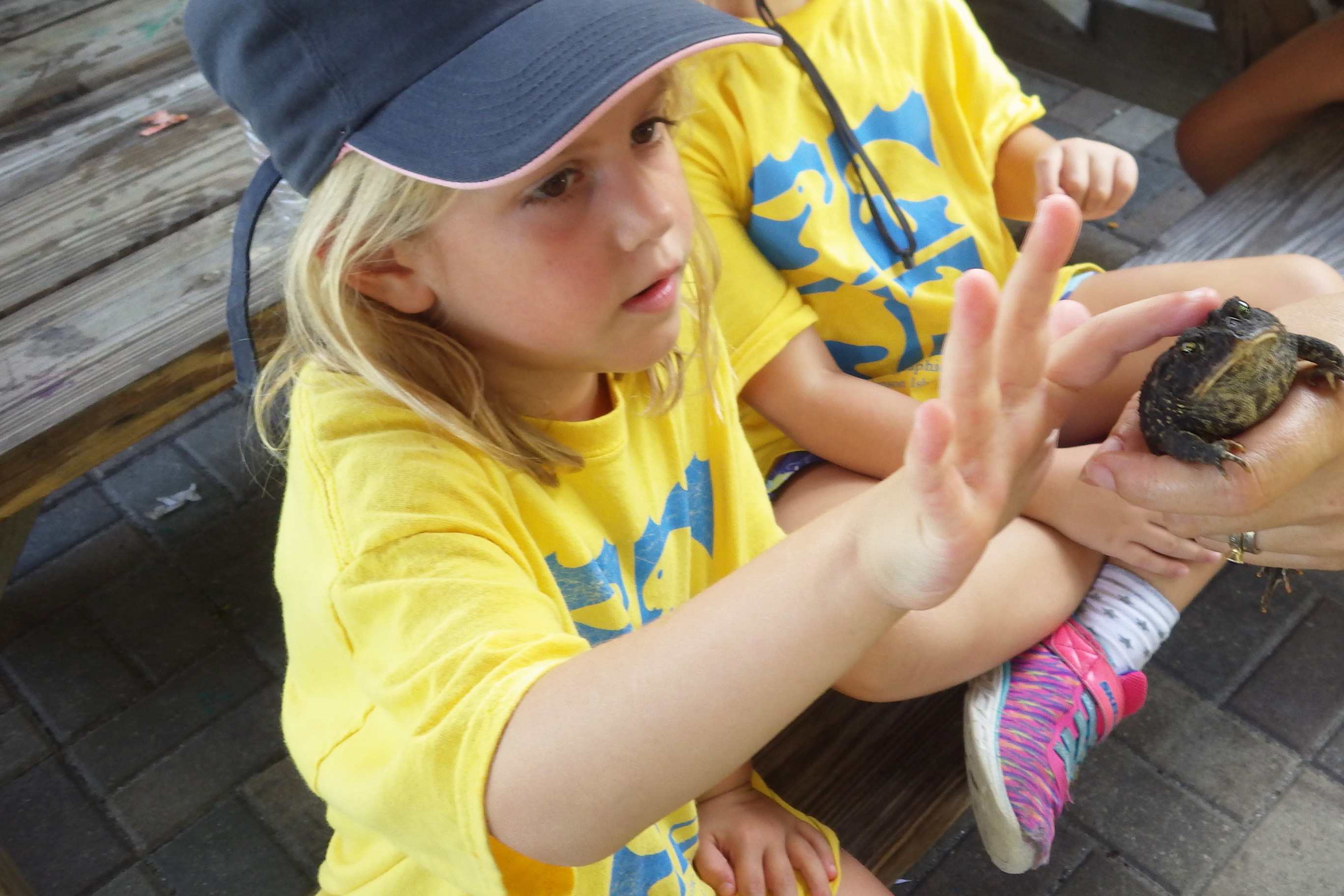 Summer Camp | Florida Oceanographic Society