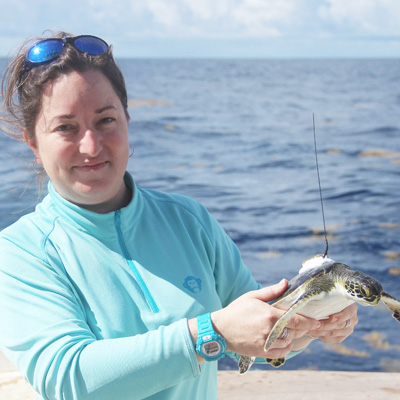 scientist holding a sea turtle