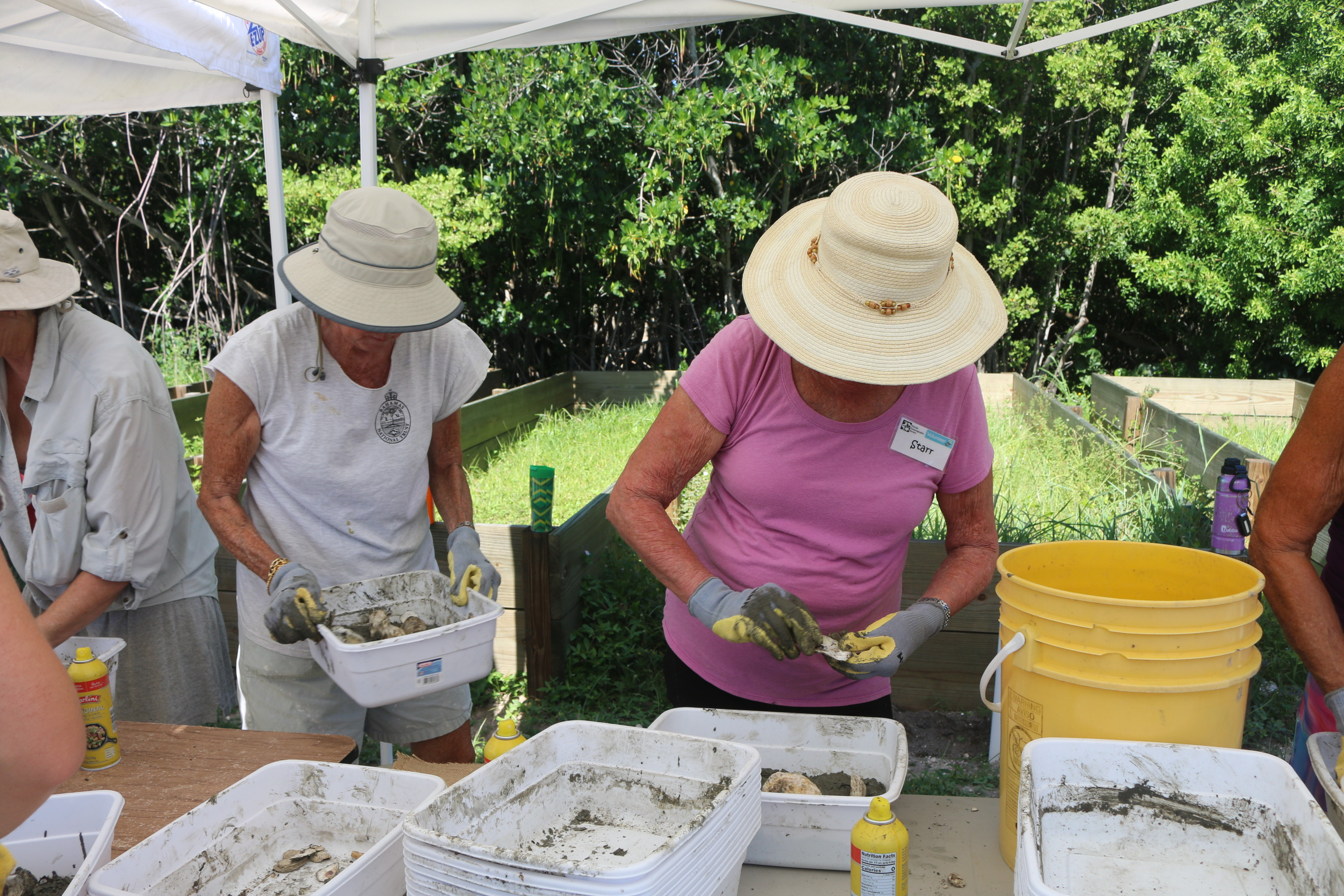 volunteers creating oyster restoration modules