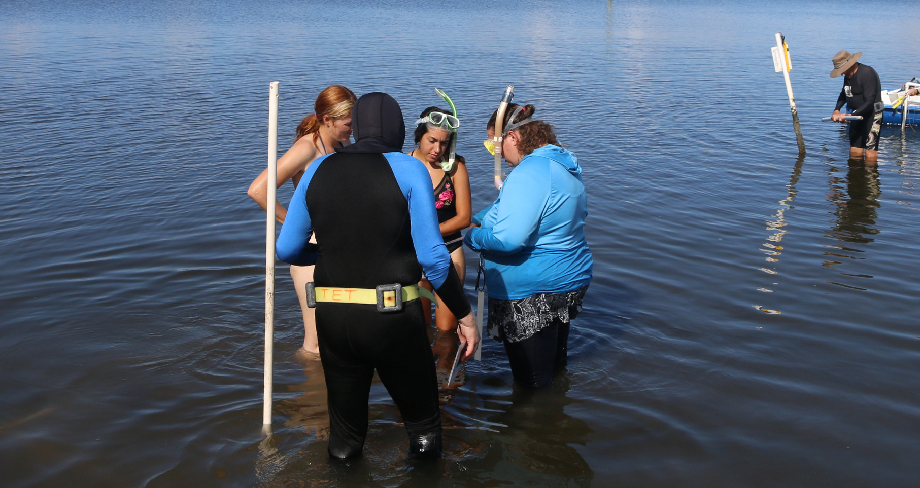 seagrass volunteers in the Indian River Lagoon