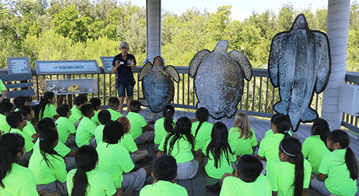 Group of kids attending an class on turtles at florida ocean
