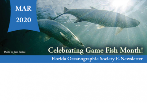 Game Fish Month